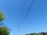 P1700571.jpg