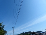 P1800900.jpg