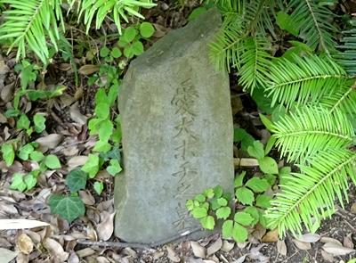 DSC05799愛犬の墓