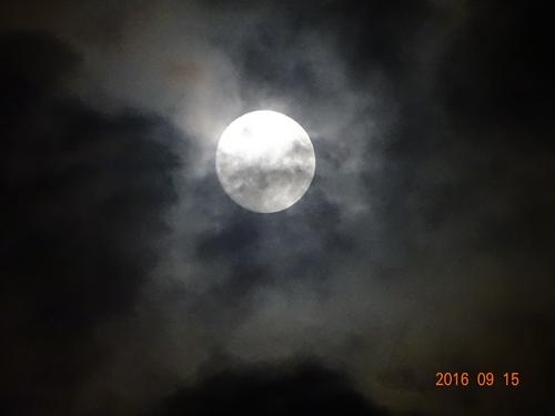 DSC06720十五夜の月