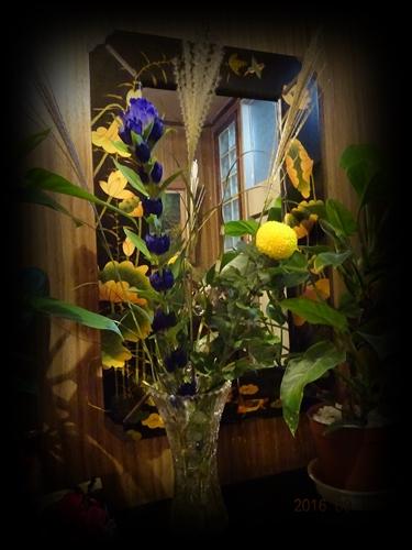 DSC06705月見のお花