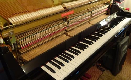 DSC06730ピアノ調律2