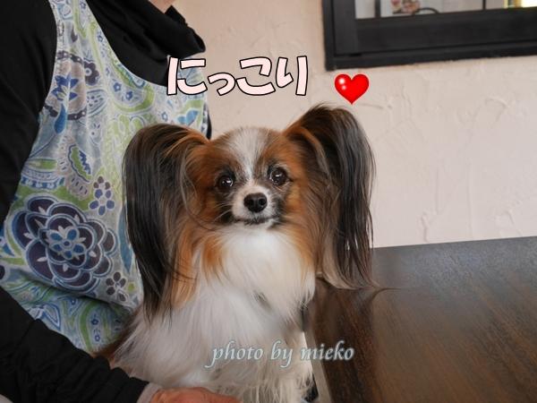2016_04_15 mieko0005_xlarge