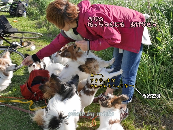 2016_04_15 mieko0027_xlarge
