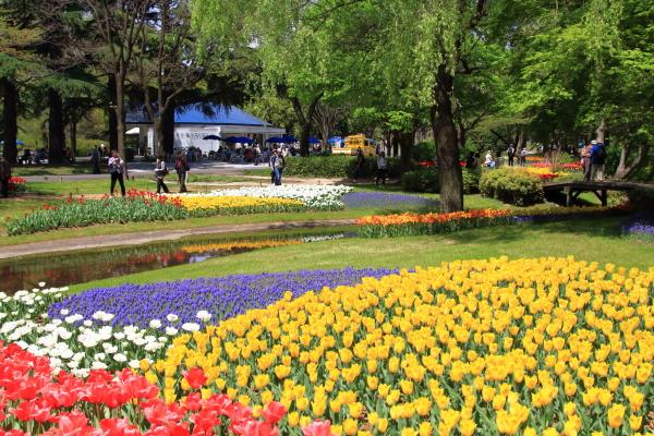 昭和記念公園 リオン君00001422