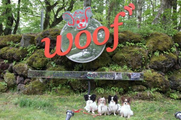 2016年 WOOF00005621