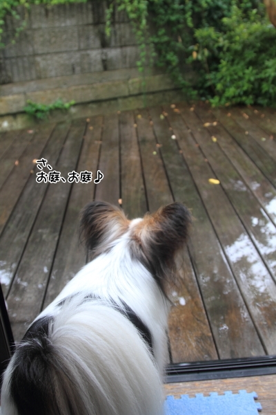IMG_7568雨の日に遊ぶ雨の日に遊ぶ
