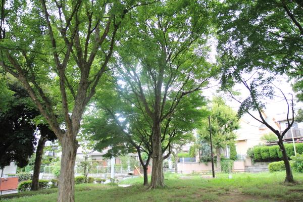 IMG_8182公園サブレ公園サブレ