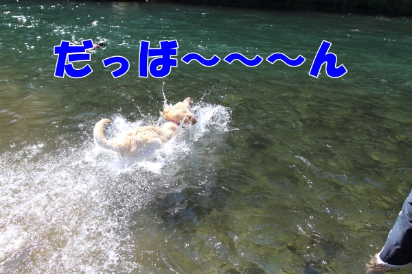 IMG_8289川遊び川遊び