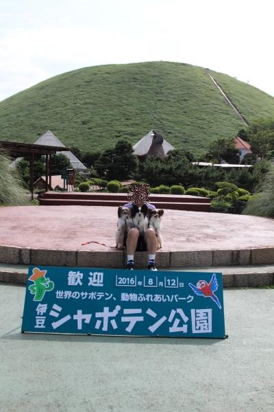 IMG_87112016年夏 伊豆旅行2016年夏 伊豆旅行