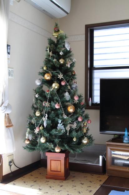 新しいクリスマスツリー00000528