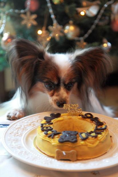 12月のカレンダー写真0003バースデイケーキ&クリスマス