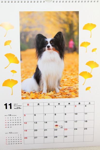 2017年 カレンダー00000661
