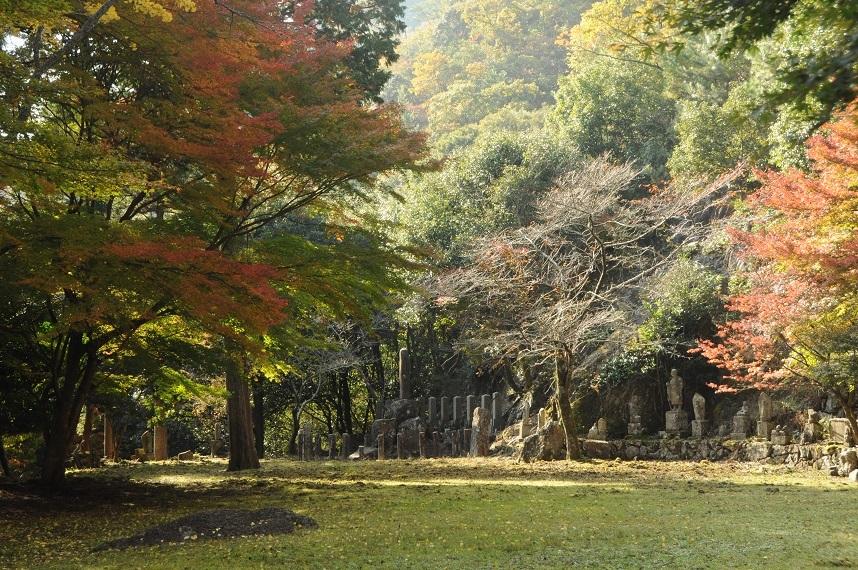 竹谷山17