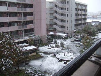 11/24 54年ぶりの11月に降る初雪