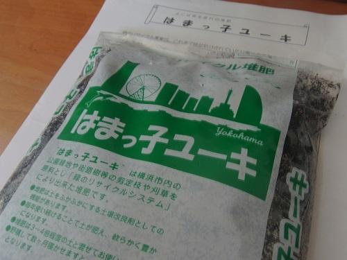 RIMG0321.jpg