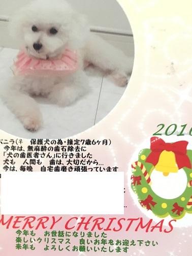 201612245.jpg
