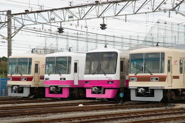 kunugiyama2.jpg
