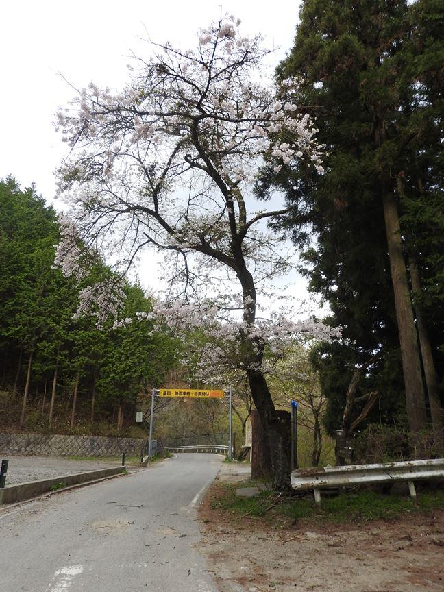b 和田峠