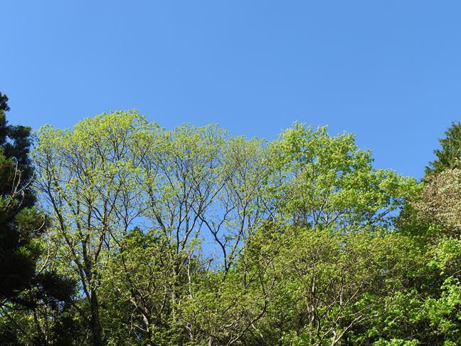 i 大塚山で