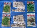 H28.5.6四角豆等種袋@IMG_8589