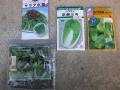 H28.9.9冬野菜種袋@IMG_9430