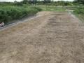 H28.9.14冬野菜定植・播種予定地耕起前@IMG_9481