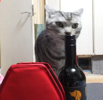 ワインクーラー2
