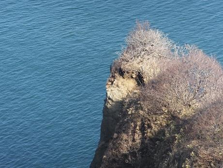 5地球岬の岩2