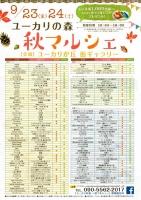 yu-karinomori1.jpg