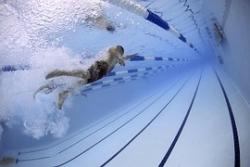 swimmers-79592__180.jpg