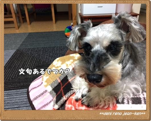 20161129_1b.jpg