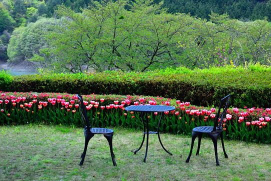 ギャラリー庭園