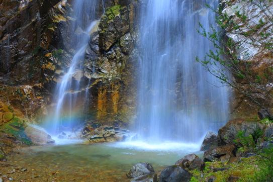 飛沫に虹かかる不動滝