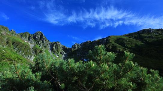 宝剣岳を彩る雲とハイマツ