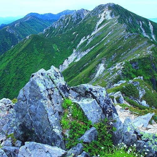 緑色に覆われた空木岳