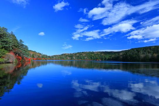 白駒池の湖面に映える紅葉と雲