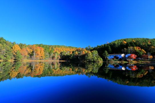湖面に映える紅葉の木々と森