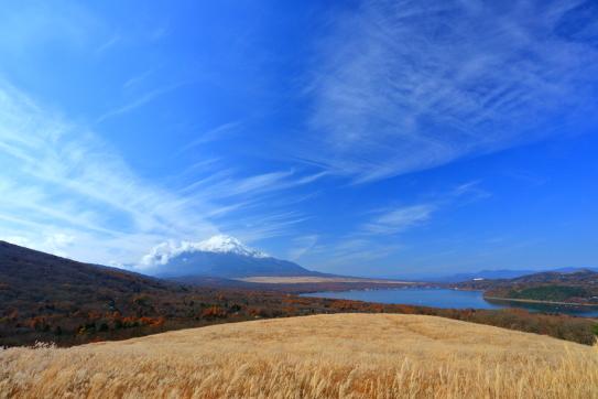 ススキの草原と雲を擁する霊峰富士