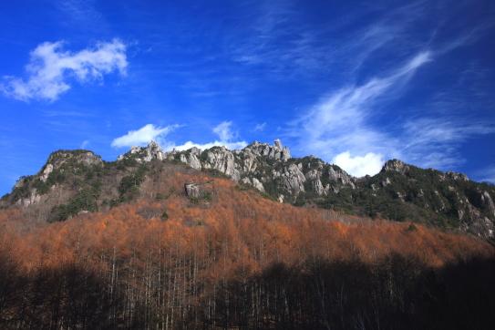 カラマツの黄葉と雲の映える瑞牆山