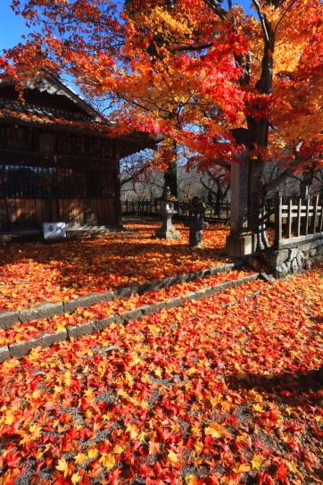 高遠城址・諏訪神社の紅葉
