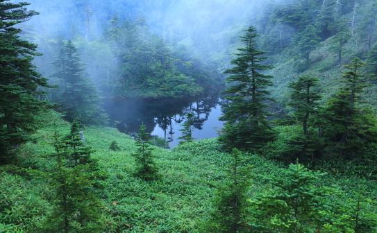 04-志賀山の霧に煙る池塘の森