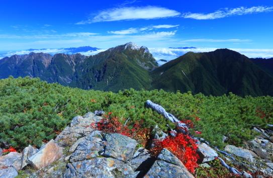 11-東駒ヶ岳を彩る紅葉と雲