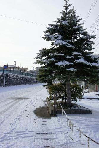 雪の国から2013①