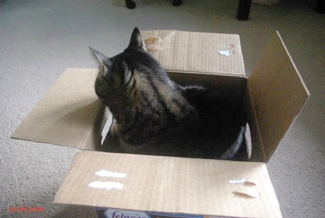 箱が増えた1
