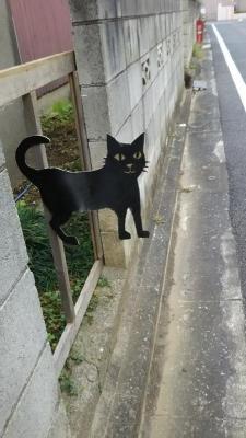 猫飛び出し(て)ます看板