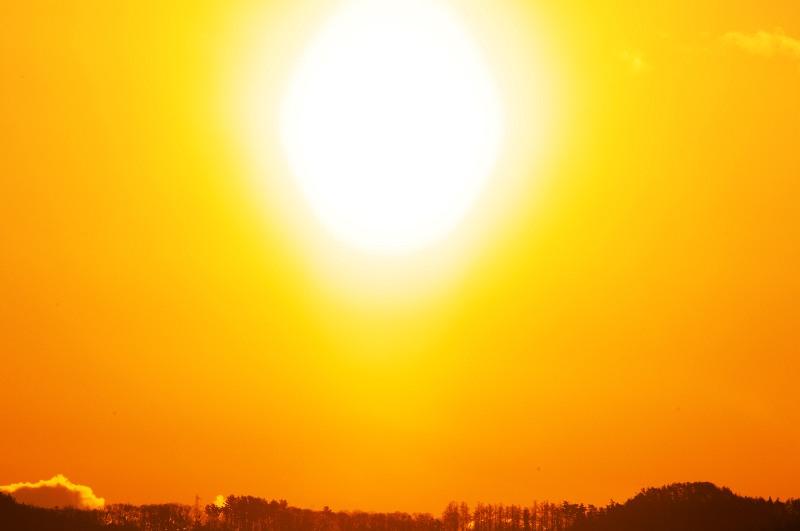 みちのく朝陽光