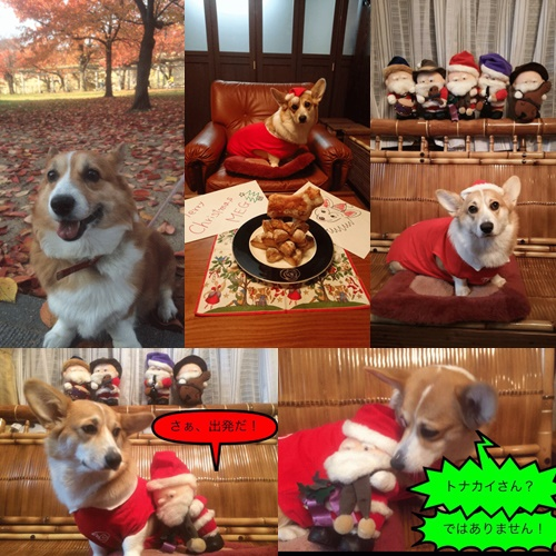 メグちゃんクリスマス