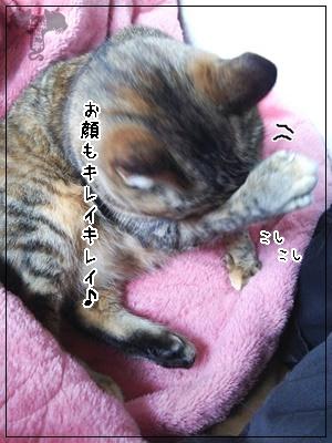 upload_-1 (12)