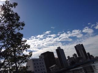 鱗雲やし涼しいし